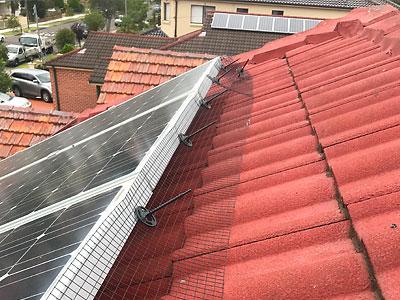 Bird Proofing Solar