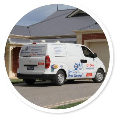 Termite and Pest Control Dubbo